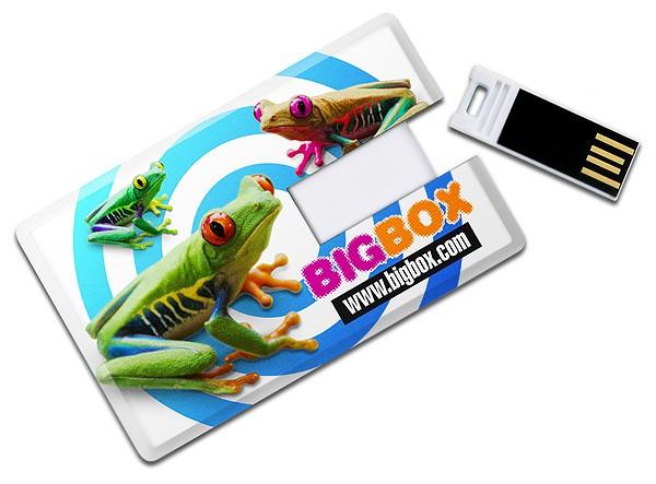 CLE USB  CARTE DE CREDIT SAUGE